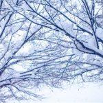 冬の寒い季節も油断しないで!冬のヘアトラブルと対策法!